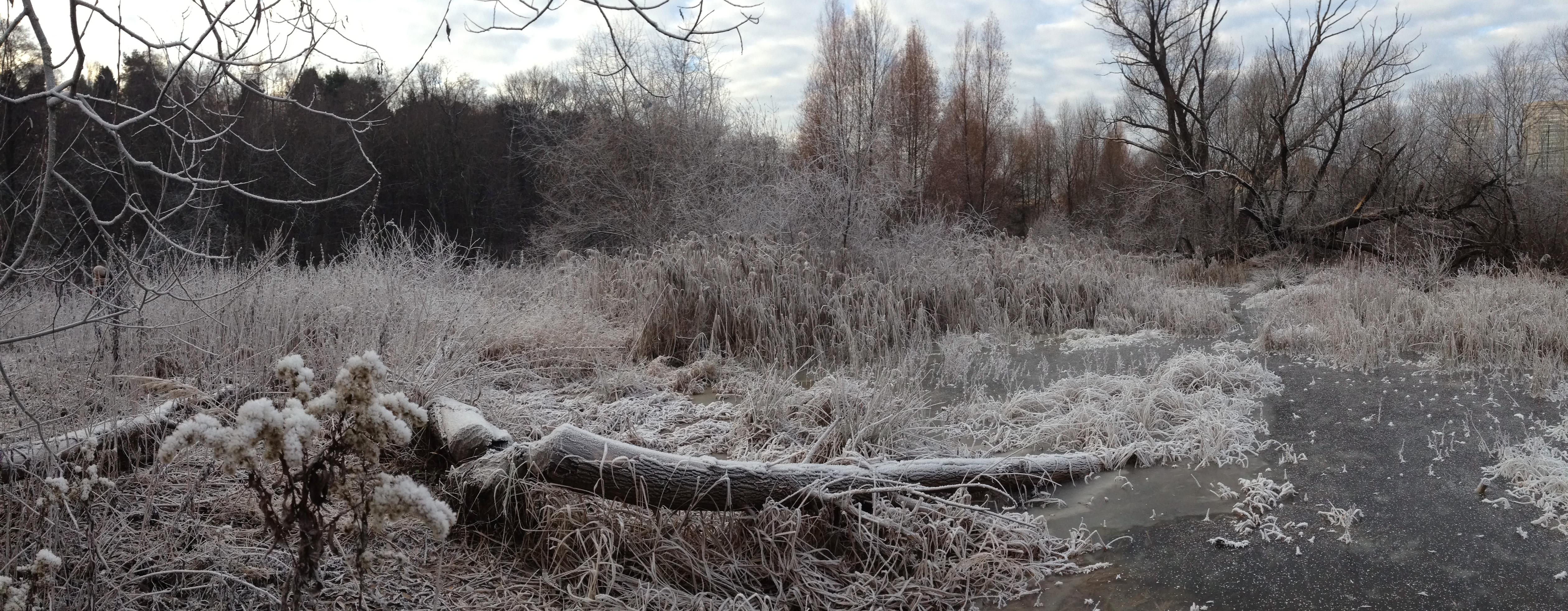 Осень НоябрьПервый Снег Река Пейзажи природы Альберт Сафиуллин