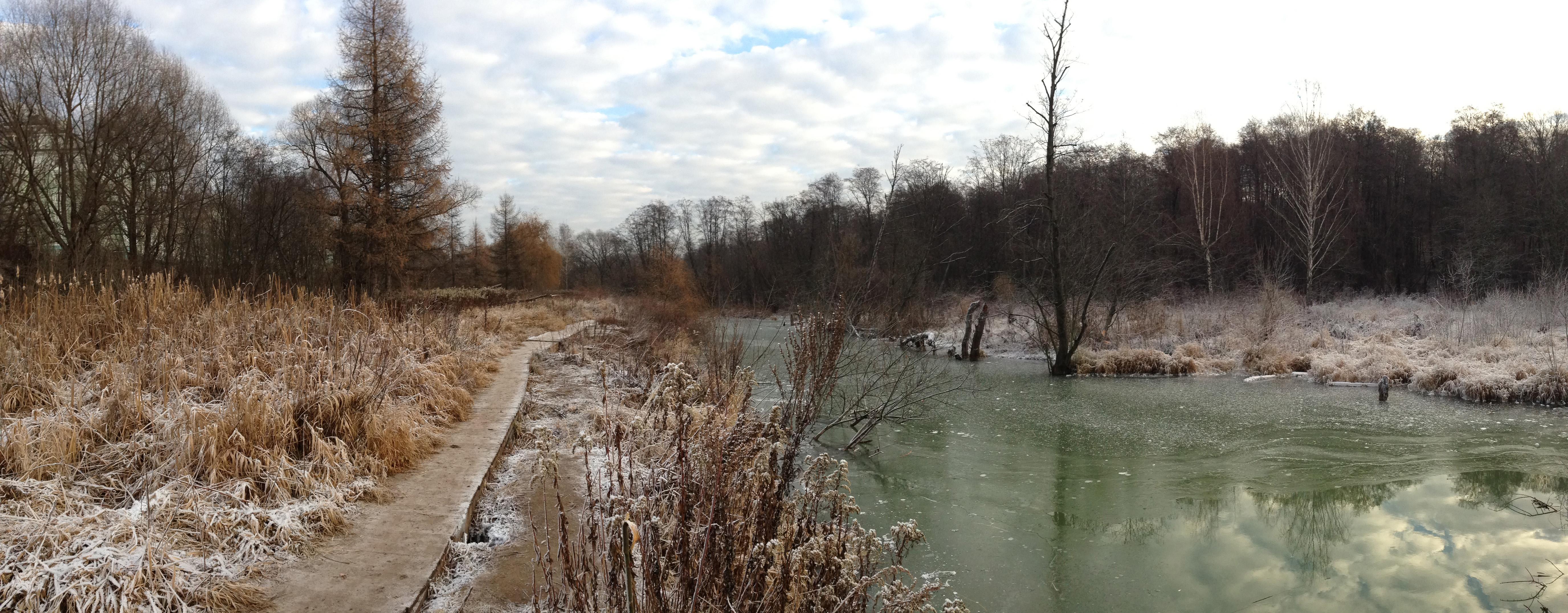 Осенний пейзаж река природа Альберт Сафиуллин