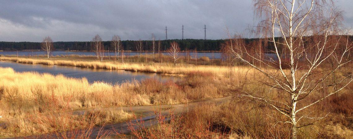 Большая река в марте. Панорама.
