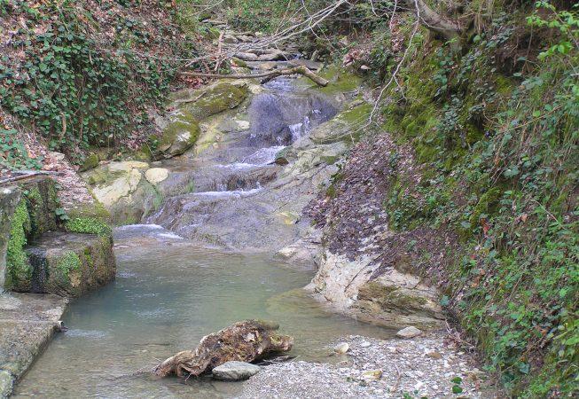 Река Псахо -Сочи