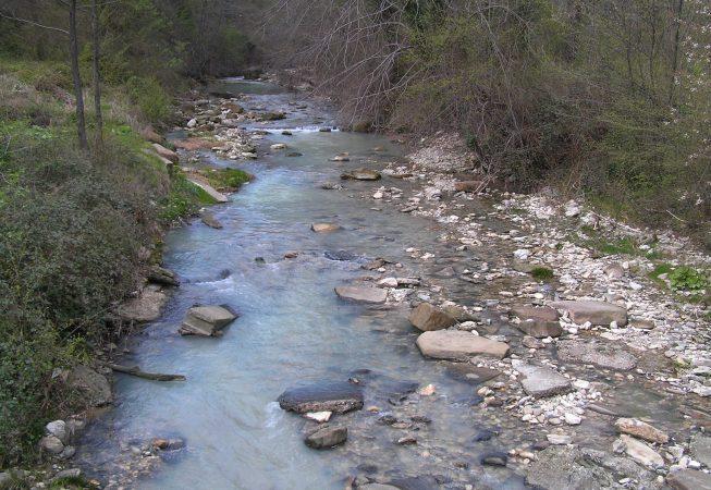 Река Псахо. Сочи.