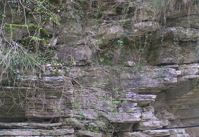 Каньон реки Псахо Сочи пейзажи природы Сафиуллин