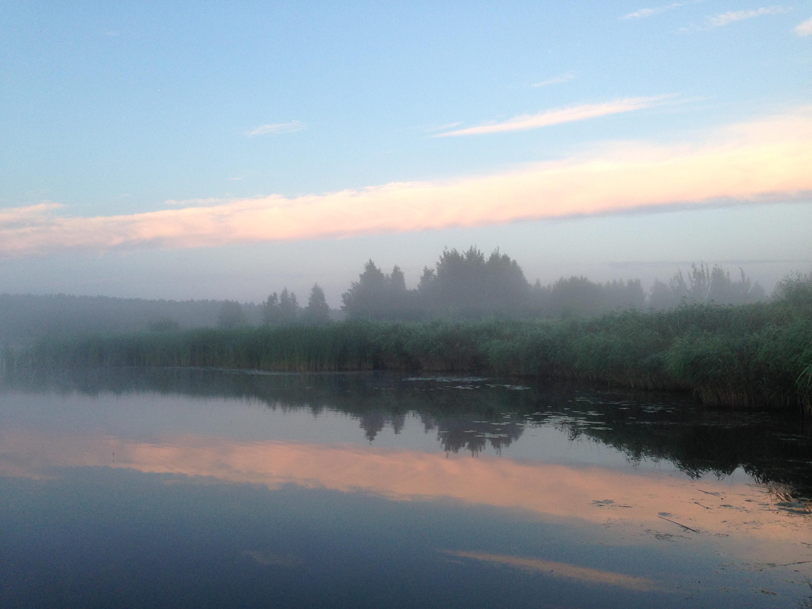 Тихой утро в июле речной пейзаж