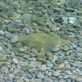 Теплое прозрачное море — Родос