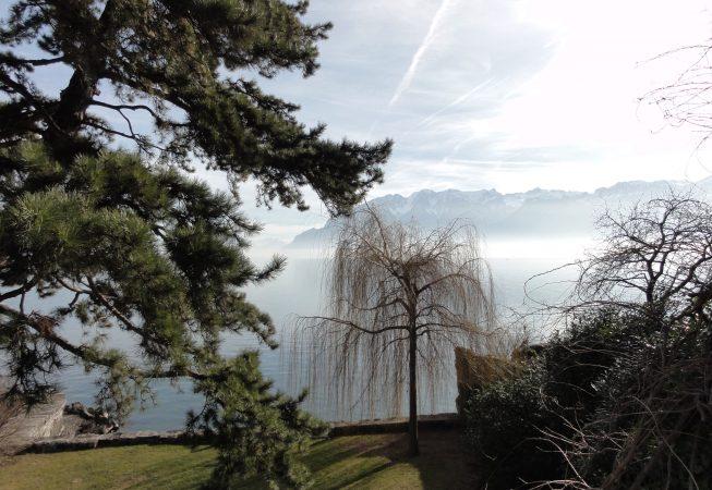 Женевское озеро  в феврале. Веве
