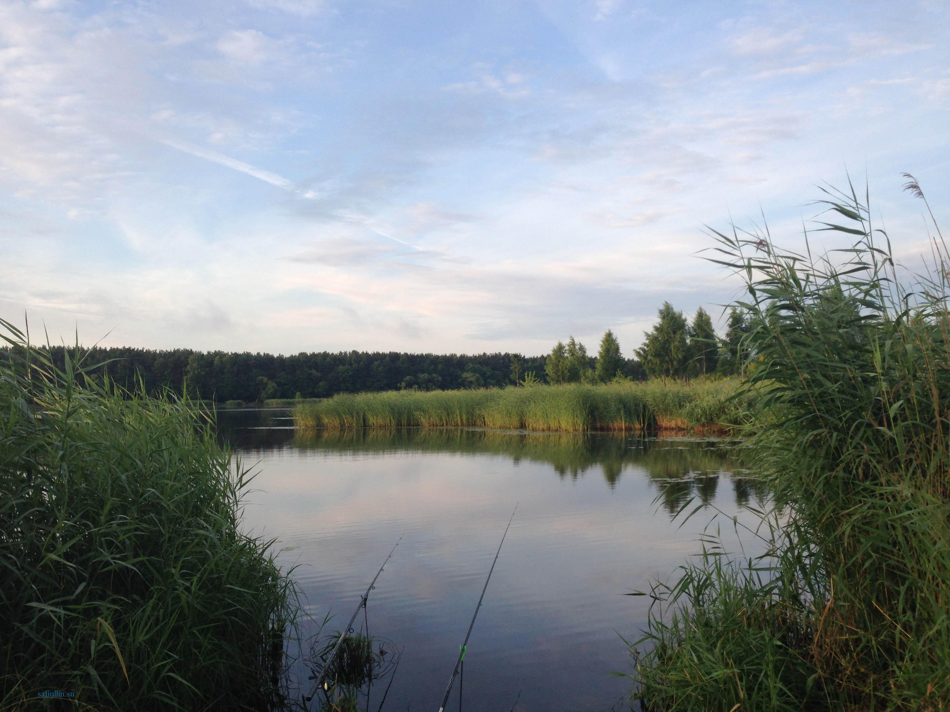 пейзажи природы альберт сафиуллин лето утро рыбалка река лиелупе
