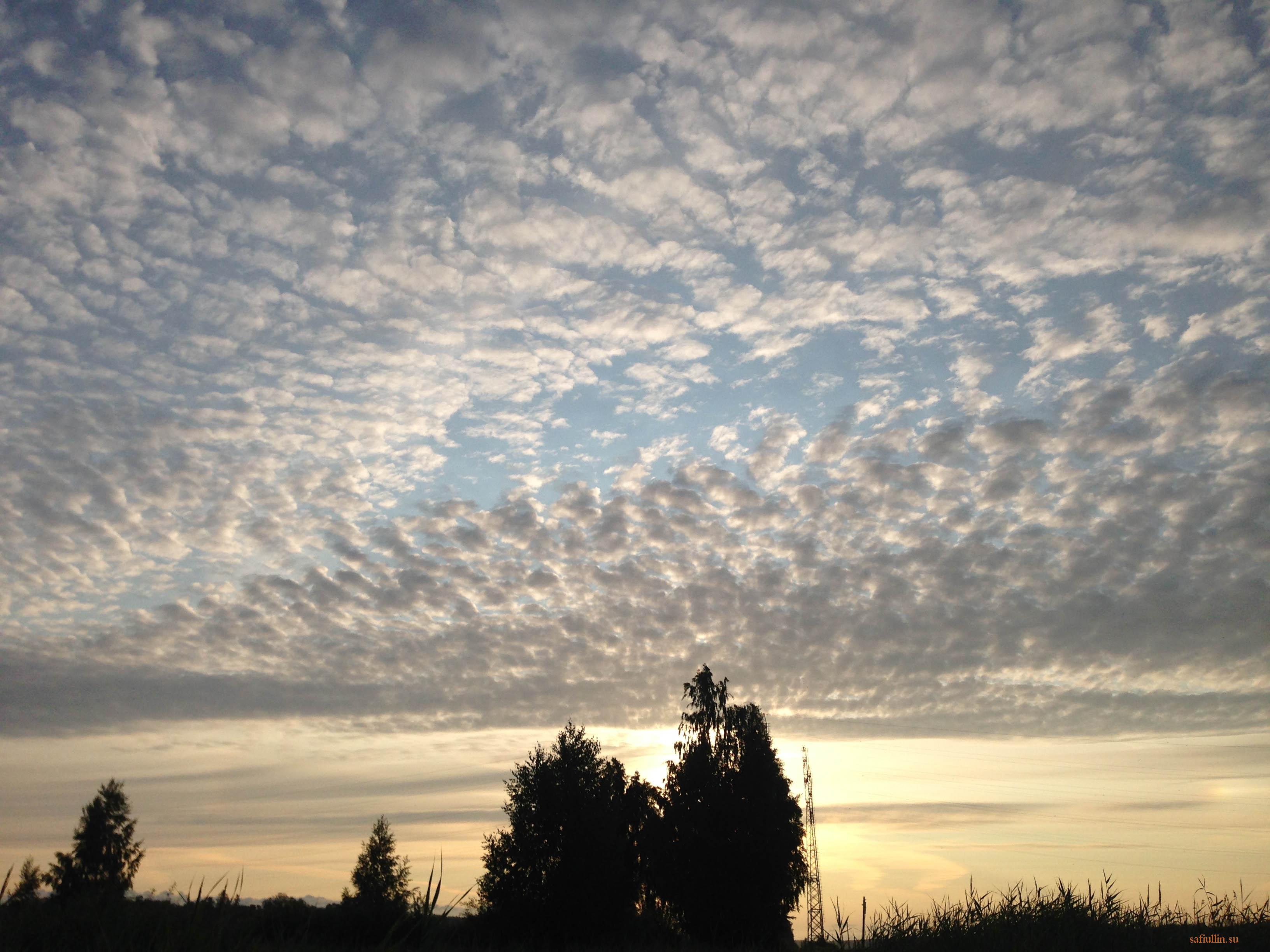 пейзажи природы альберт сафиуллин восход солнца перистые облака лето