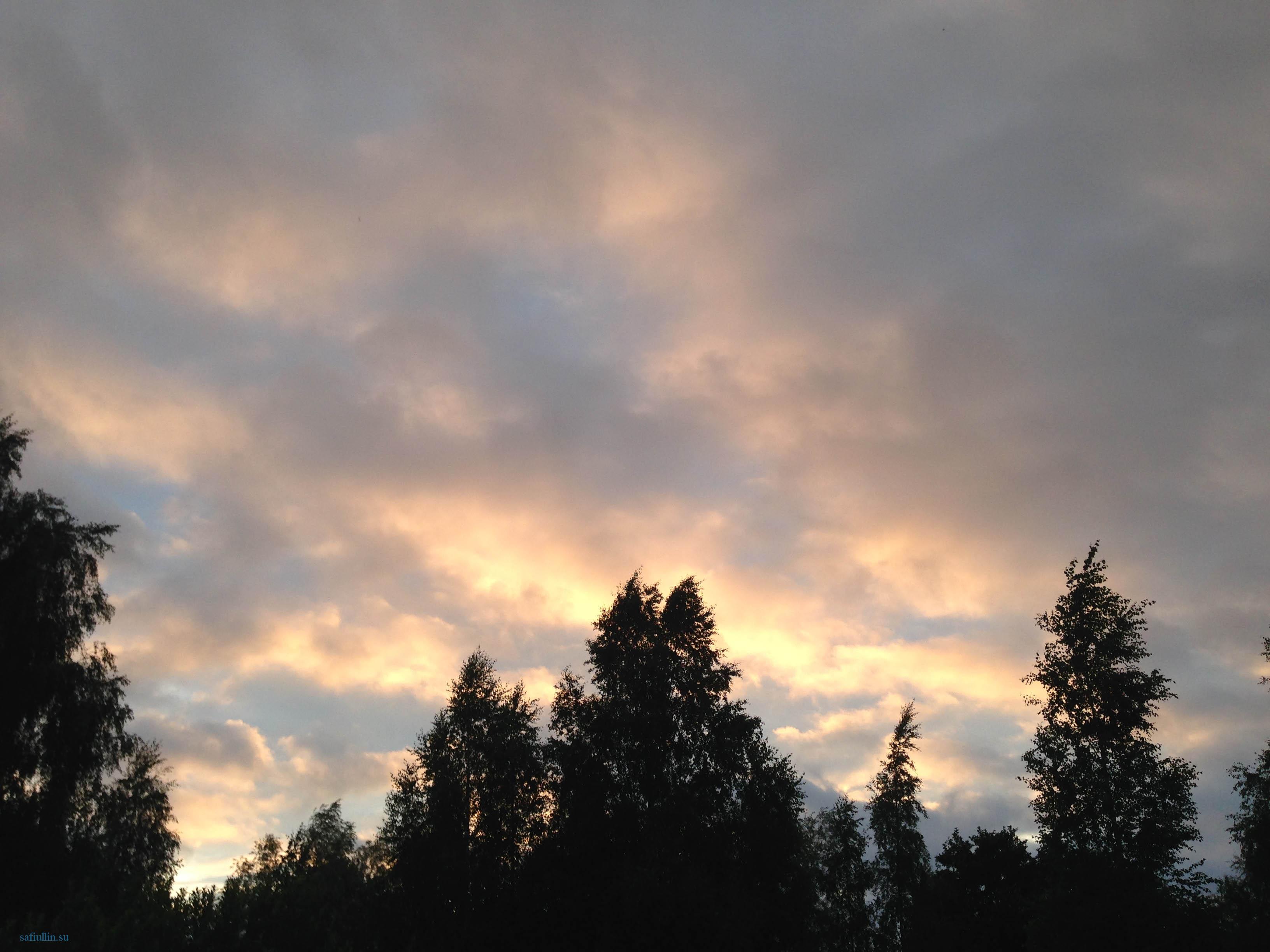 пейзажи природы альберт сафиуллин лето закат солнца