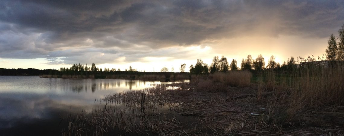 Тучи, река и камыши. Речной пейзаж в мае.