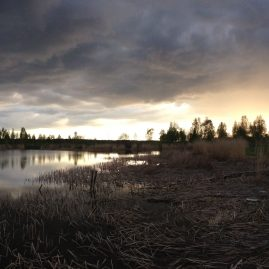 Речной пейзаж Тучи камыши Закат весна природа Альберт Сафиуллин