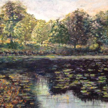 Новый пейзаж — заросший пруд в лесу