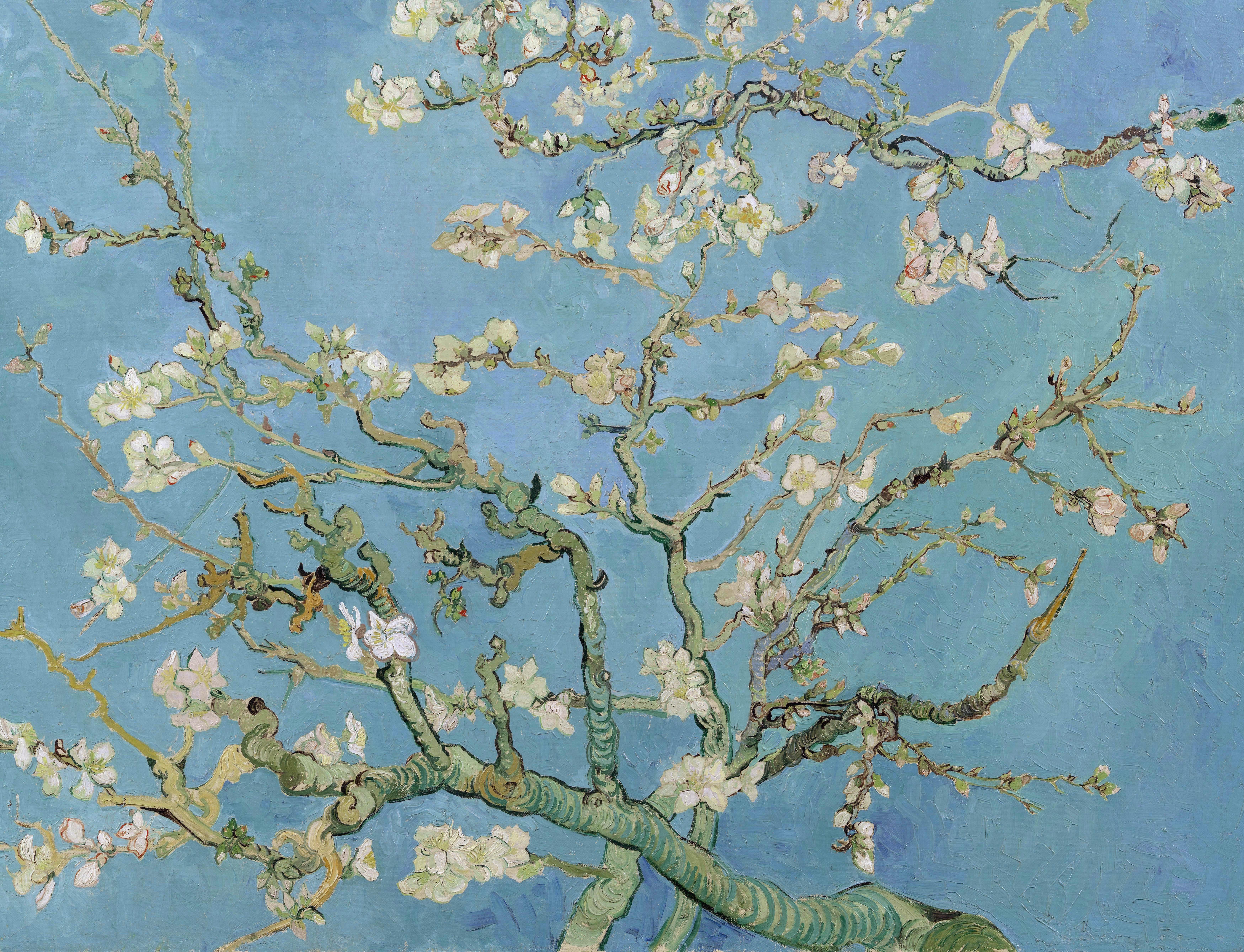 Художник Винсент Ван Гог Vincent Van Gogh картина Цветущий миндаль пейзажи природы Альберт Сафиуллин