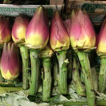Артишоки Италия Флоренция Mercato Centrale цвета и краски природы Альберт Сафиуллин