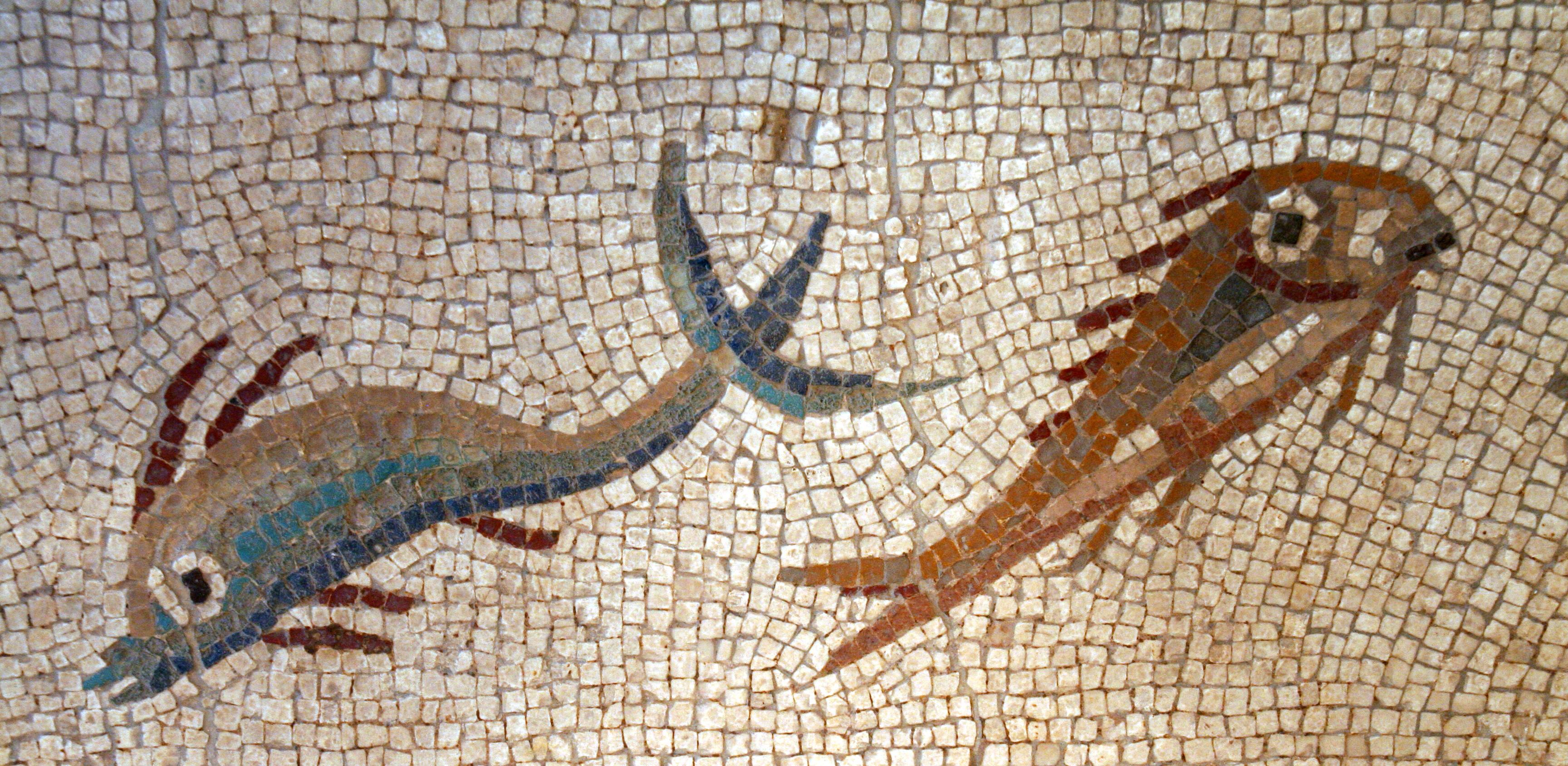 рыба Барабулька краснобородка римская мозаика пейзажи природы Альберт Сафиуллин