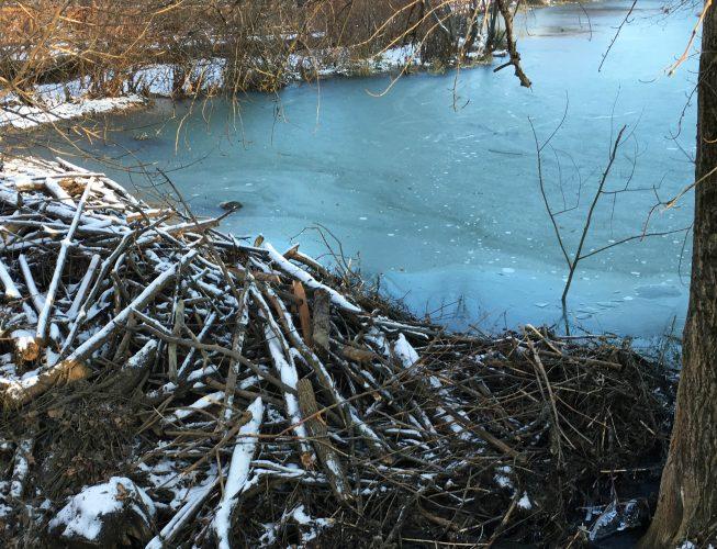 Первый лед на реке - бирюзовый  оттенок