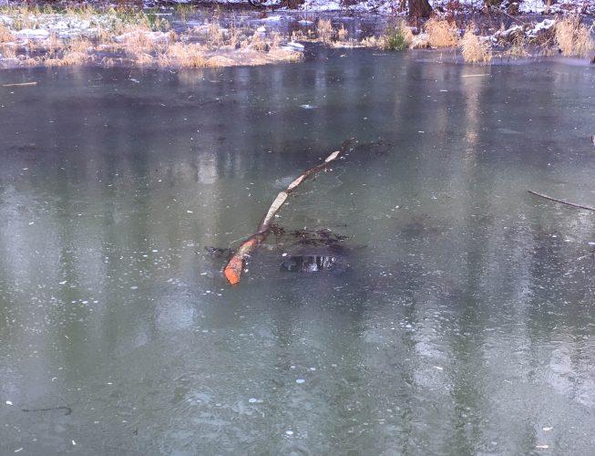 Первый лед на реке - сиреневые оттенки