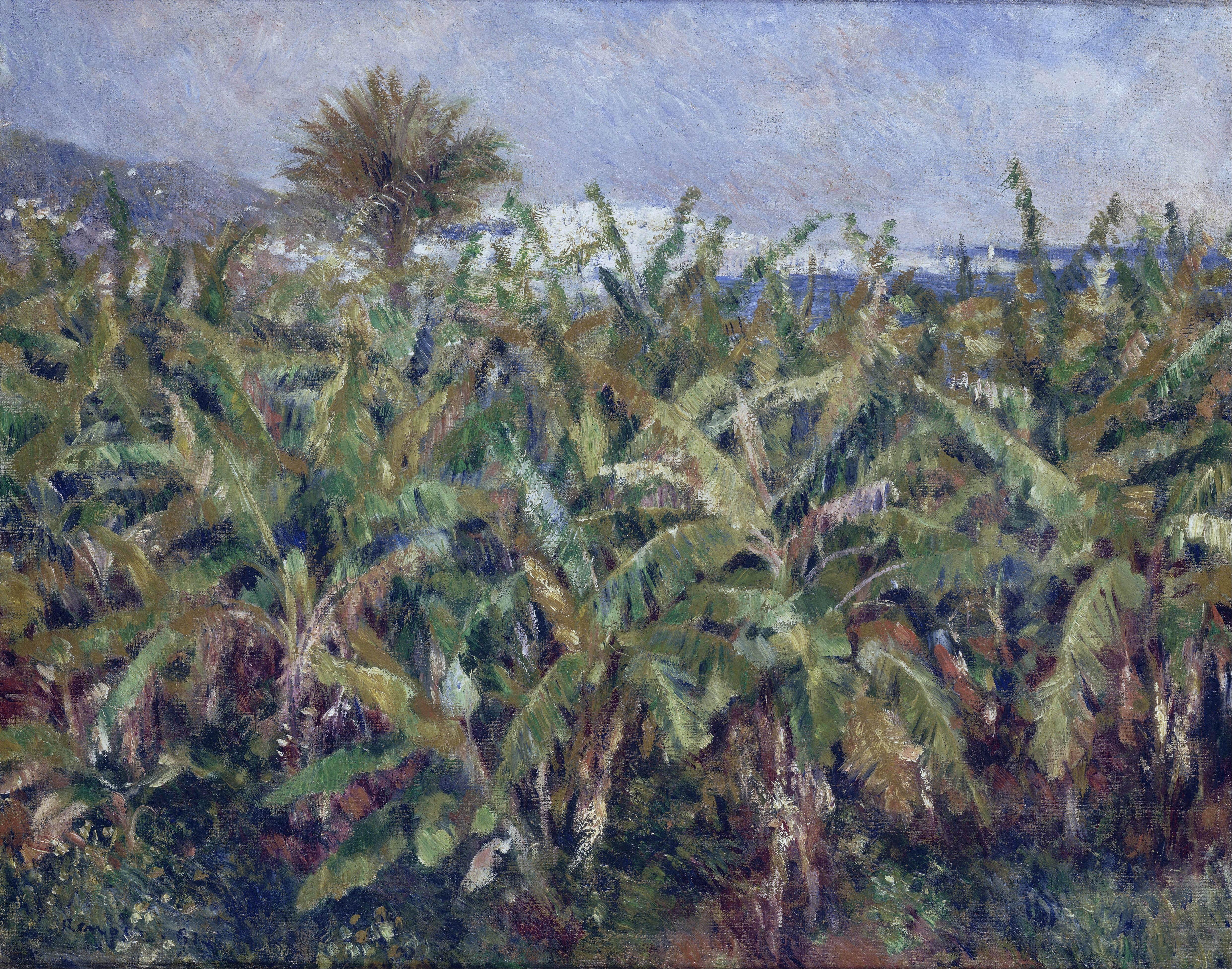 Художник Ренуар Renoir картина Банановое поле Champ de bananiers пейзажи Природы Альберт Сафиуллин
