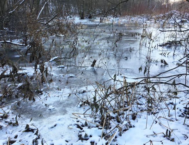 Первый лед на реке - серый