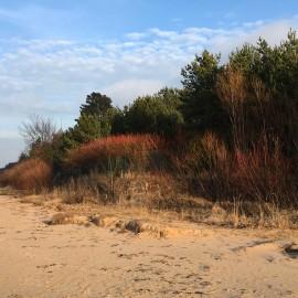 Солнечный закат в дюнах