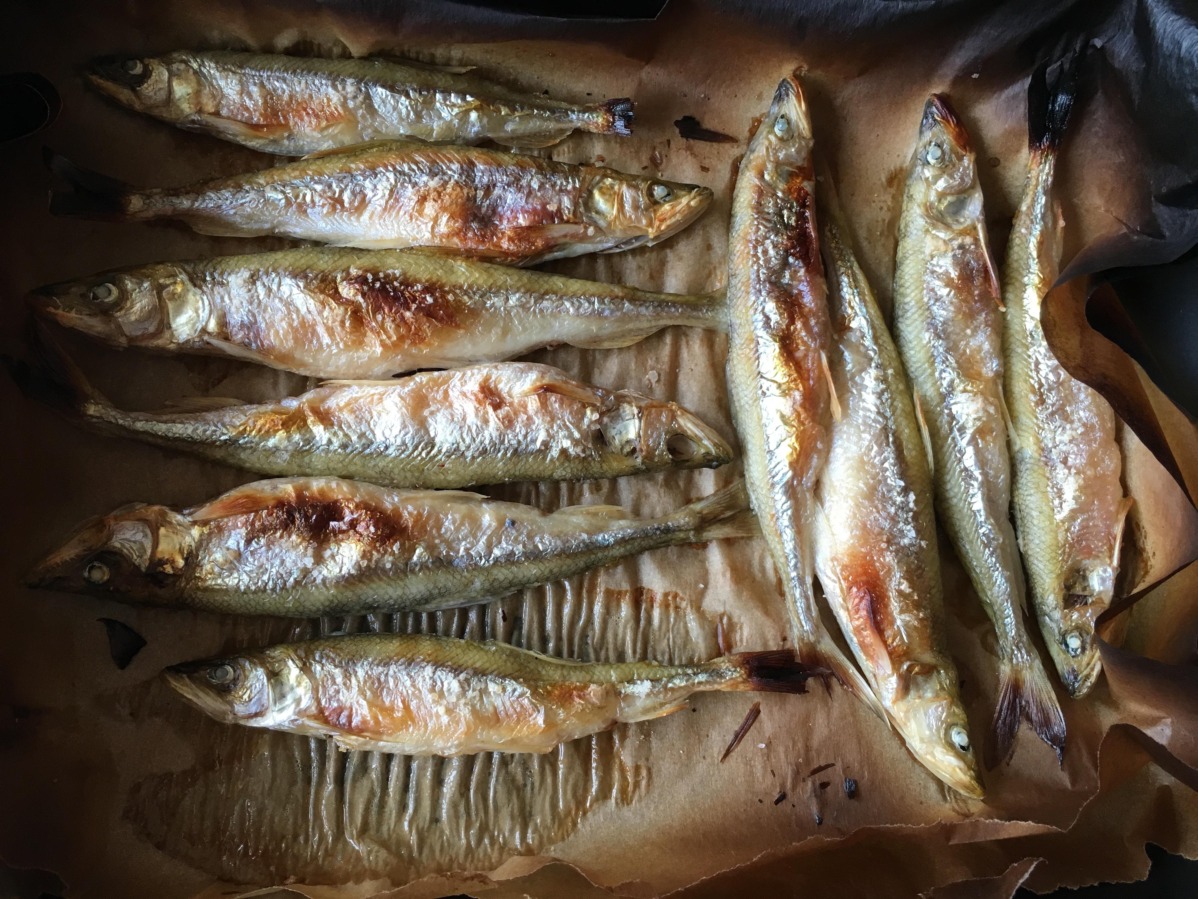 Корюшка гриль рыбалка кулинария пейзажи природы Альберт Сафиуллин