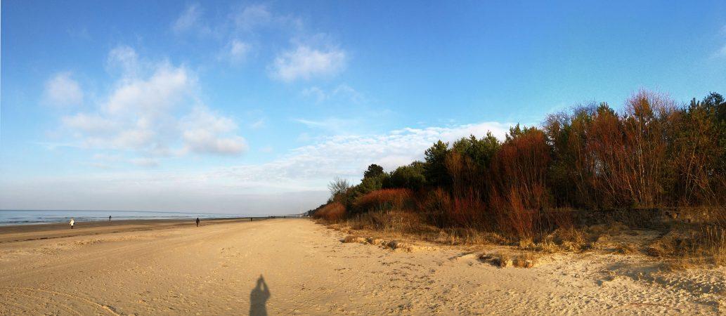 Морской пейзаж в марте. Юрмала. Дюны.