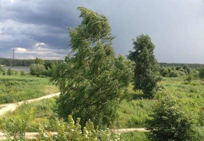 Ветер лето гроза Прибалтика пейзажи природы Альберт Сафиуллин