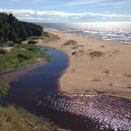 Белая дюна и фиолетовая река Инчупе (Саулкрасты)