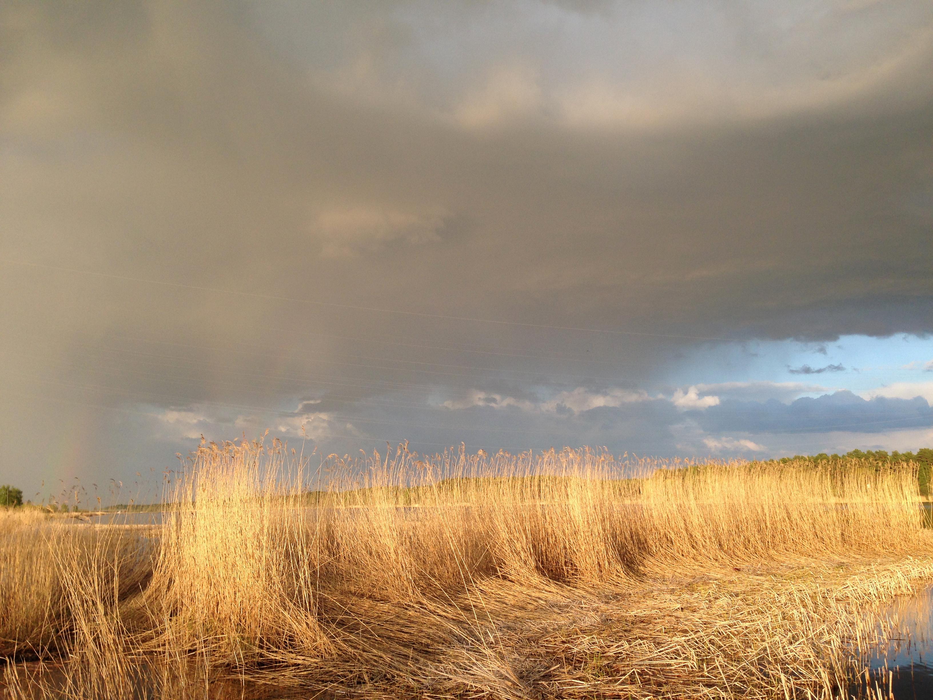 Рыбалка лещ радуга май речной пейзаж юрмала лиелупе пейзажи природы Альберт Сафиуллин