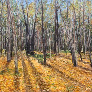 Новая работа — Осенний лес. Покровское-Стрешнево