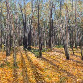 Осенний лес. Покровское-Стрешнево