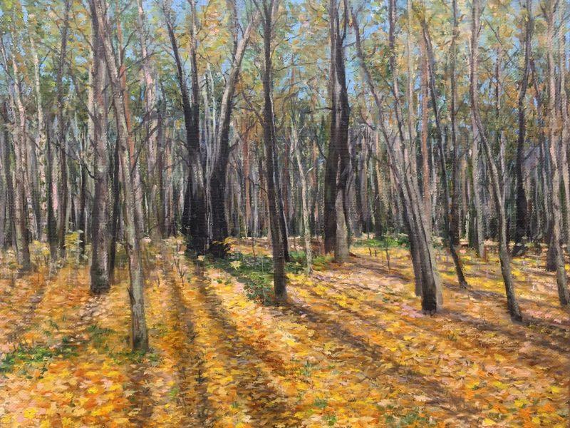 Осенний лес. Покровское-Стрешнево.
