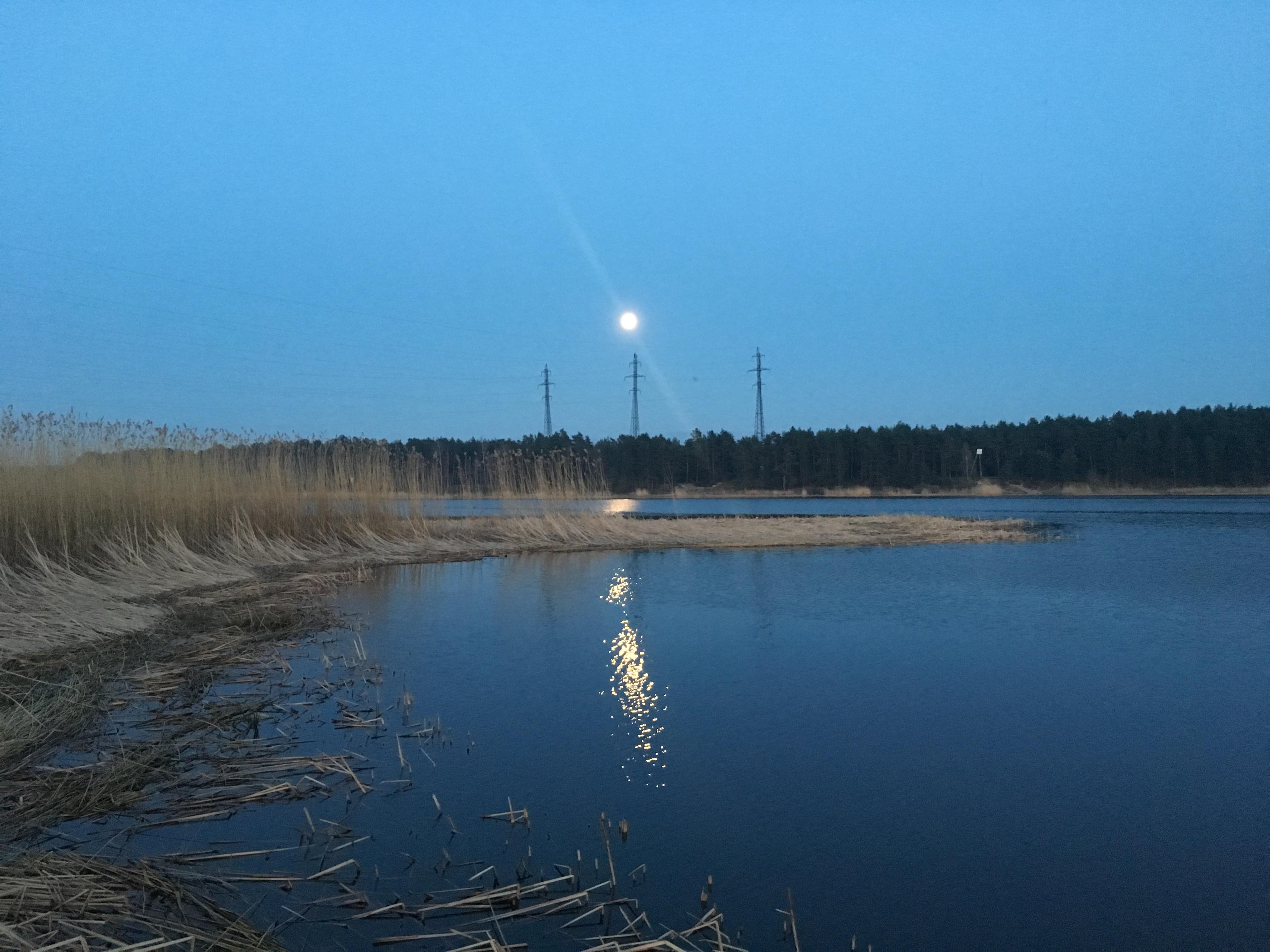 рыбалка Юрмала Латвия река Лиелупе Lilelupe пейзажи природы Альберт Сафиуллин Albert Safiullin