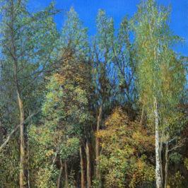 Осень в парке Покровское-Стрешнево