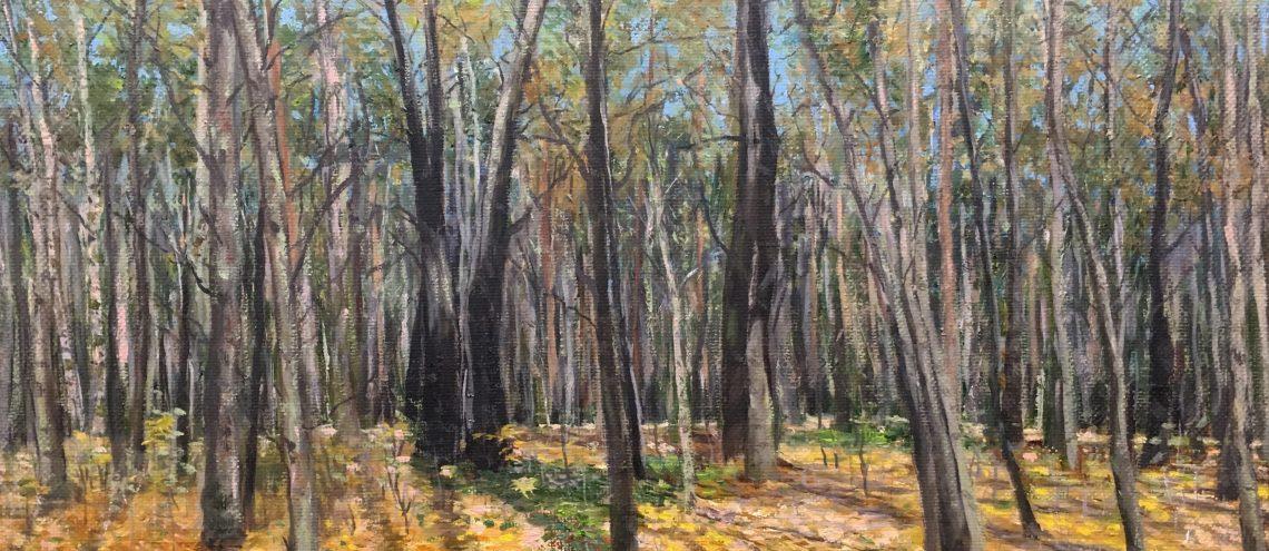Пейзажи природы художник Альберт Сафиуллин картина маслом