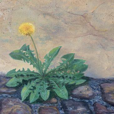 цветы одуванчик пейзаж городской картина маслом художник Альберт Сафиуллин