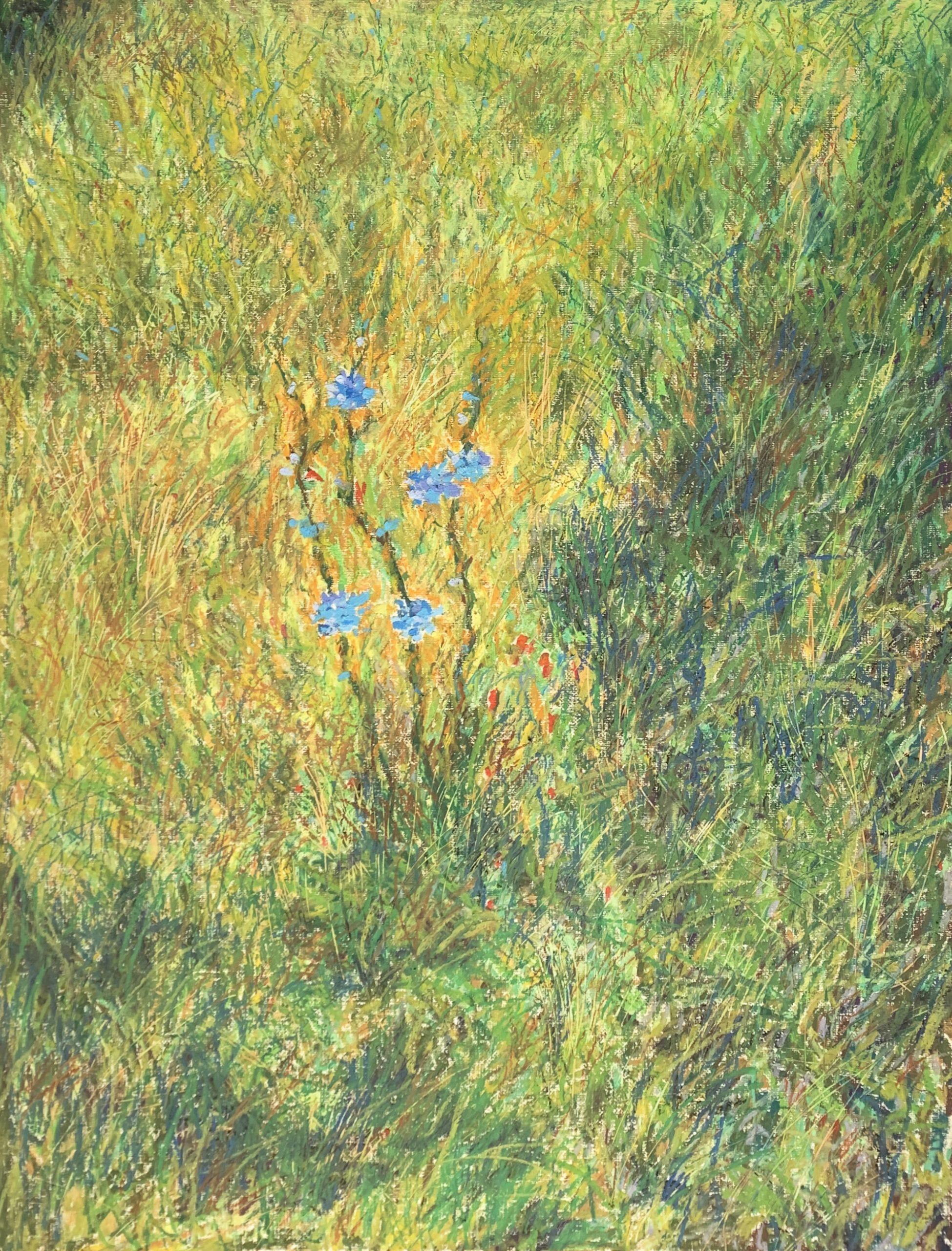 Васильки цветы картина масляная пастель пейзажи природы Альберт Сафиуллин