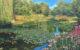 Пруд Живерни кувшинки Моне импрессионизм картина художник Альберт Сафиуллин